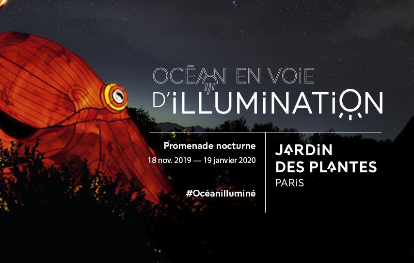 Ocean Illumination